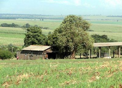 Brigada Indígena que atacó a estancia en Amambay podría ser una célula del EPP