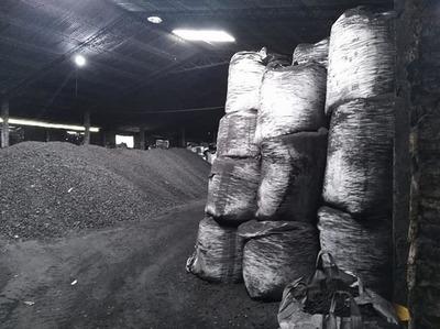 Allanan carbonera de Benjamín Aceval ante denuncias de explotación laboral