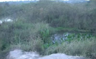 HOY / Hallan cadáver atado de pies y manos en esteral de Tobatî