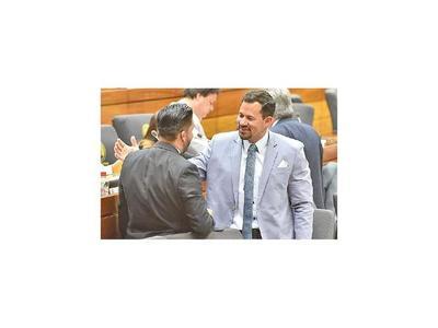 Celeste Amarilla reiteró que solicitarála pérdida de investidura del legislador
