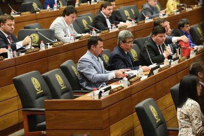 Diputados se ratifica en autoblindaje