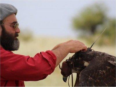 El biólogo argentino que giró el destino de un águila en peligro de extinción
