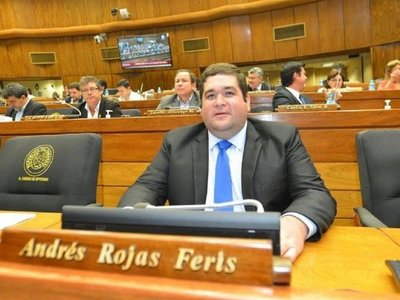 Imputación de diputado depende de informe de Alliana