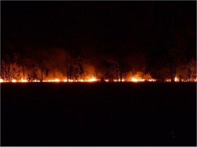 Incendios de pastizales en Itapúa preocupa a bomberos voluntarios