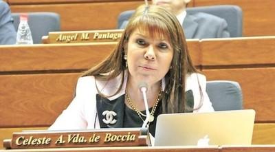 """Piden """"Pérdida de Investidura"""" de la Diputada Celeste Amarilla"""