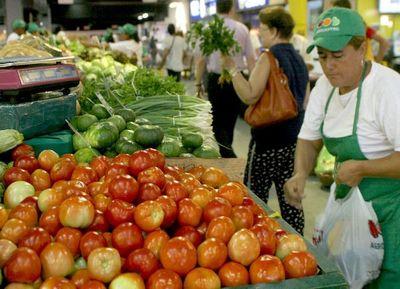 Realizan estudios sobre el tomate y la cebolla
