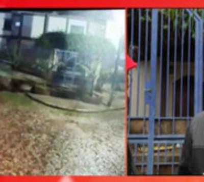 Lanzan bomba molotov en casa de intendente