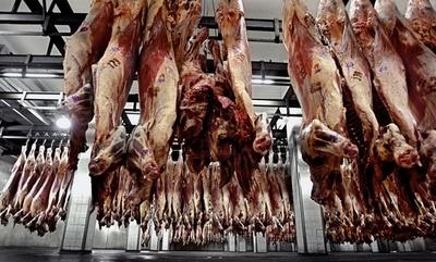 ¿Qué pasará con la compra de carne? Rusia prevé inversión millonaria para desarrollo de la ganadería