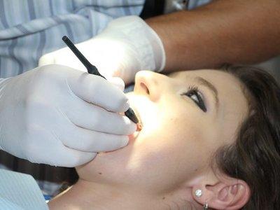 Los odontólogos y sicólogos copan plantel de 7 entidades
