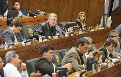 Diputados  reprueban acuerdo secreto de Itaipú y cuestionan a los gremios