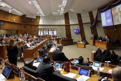 Cámara de Diputados desaprobó creación del Instituto Paraguayo de la Carne
