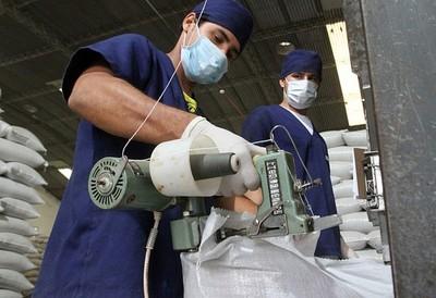 La formalización de mano de obra ocupada se incrementó en el segundo semestre de 2019