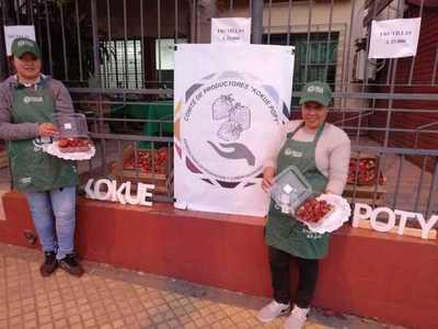 Productoras de frutilla de Caaguazú harán feria hoy en Asunción y Limpio
