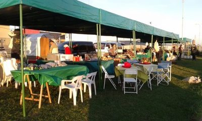 Resaltan exitosa venta en Feria Granjera