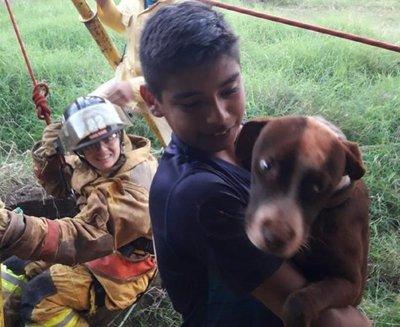 Así rescataron a una perrita que cayó a un pozo