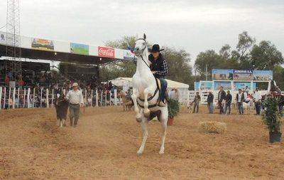 Más de 180 empresas y unos 500 animales en Expo Trebol