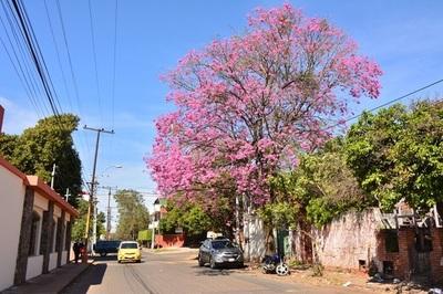 10 postales de Asunción para dimensionar su fisonomía