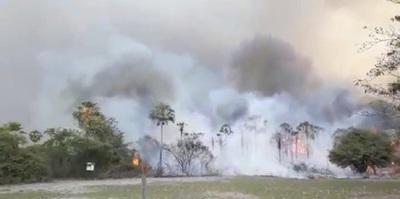 Pantanal paraguayo arde en llamas
