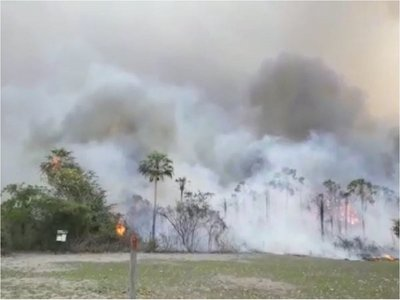 Preocupante situación por incendio forestal en el Pantanal paraguayo