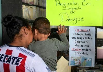 """La OPS alerta sobre """"incremento notable"""" de casos de dengue"""