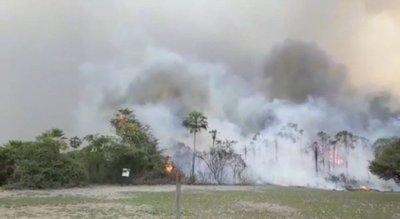 Desesperante situación en Chaco: incendio forestal provoca fuga de ganado