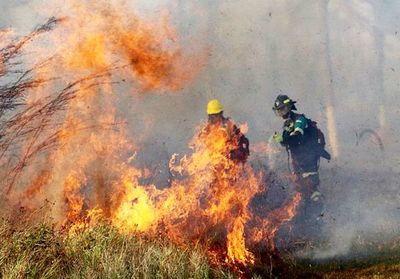 Incendios en Bolivia se acercan al Paraguay