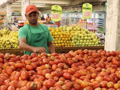 Ministro insta a productores de tomate a ser realistas con precios