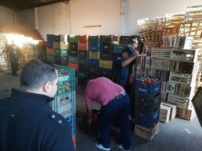 Incautan 600 cajas de tomate de supuesto contrabando