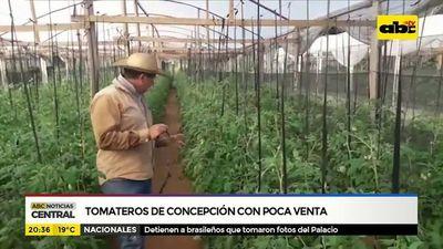 Tomateros de Concepción con poca venta