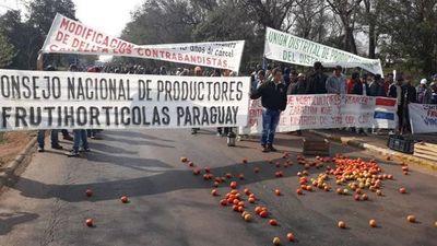 Tomateros acusan al gobierno de no tener voluntad de frenar el contrabando