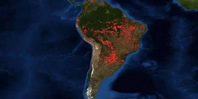 La selva amazonica arde y el panorama es devastador