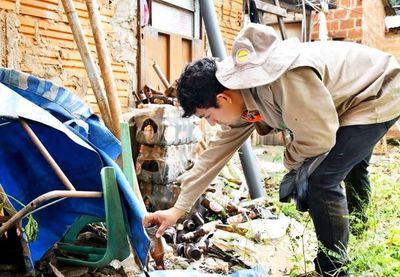Advierten que los meses de noviembre y diciembre serán los más riesgosos para la transmisión del dengue