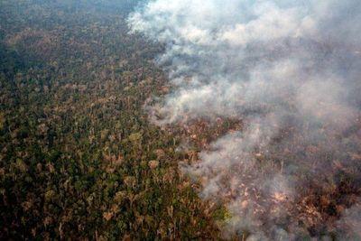 El número de incendios en Brasil hasta agosto es el mayor en 7 años