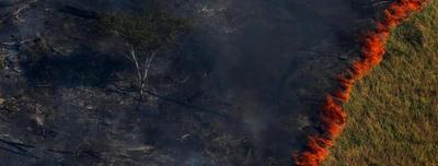 Bolsonaro sugirió que las ONG están detrás de los incendios en el Amazonas