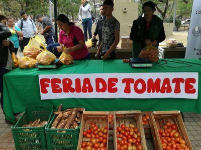Realizan varias ferias de tomate de forma simultánea