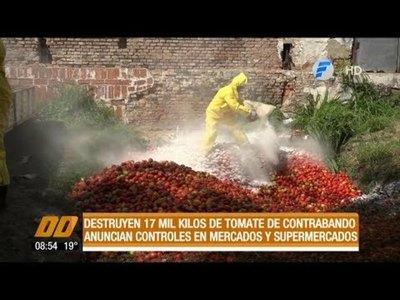 Destruyen 17 mil kilos de tomate de contrabando