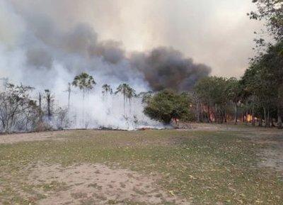 Los incendios de bosques en la región traerán sus consecuencias, afirman