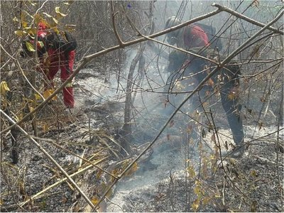 Más de 700.000 hectáreas y 1.817 familias afectadas por incendios en Bolivia