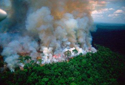"""Macron tilda de """"crisis internacional"""" a los incendios de la Amazonia"""