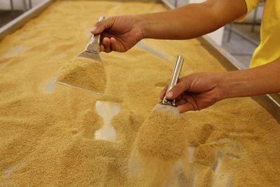 Anuncian exportación de azúcar a la República China (Taiwán)
