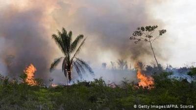 Incendios en el Amazonas: Irlanda amenaza al acuerdo UE-Mercosur y Merkel pide llevar el tema al G-7