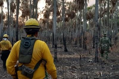 SEN no detecta nuevos focos de incendios en Bahía Negra