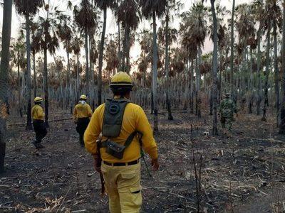 Mades recaba pérdidas en fauna y flora del Pantanal paraguayo tras incendios