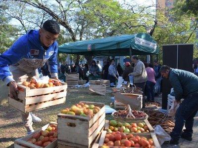 La venta de tomate nacional en ferias continúa con éxito