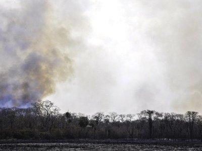 Paraguay perdió 22 millones de hectáreas por incendios en los últimos 19 años