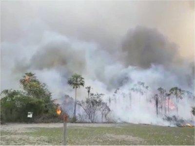 El CAF donará medio millón de dólares a Brasil, Bolivia y Paraguay por los incendios en el Amazonas