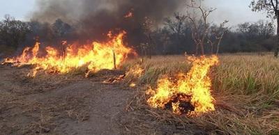 Fuego vuelve a ingresar a territorio paraguayo