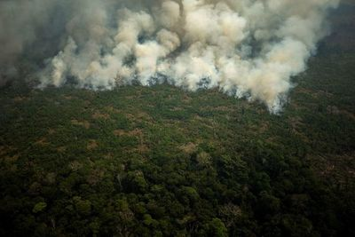 El humo ahoga el norte de Brasil mientras los incendios en la Amazonía se  enfurecen