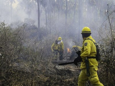 Fuego arrasa de nuevo con bosques  en  Pantanal chaqueño y otros puntos