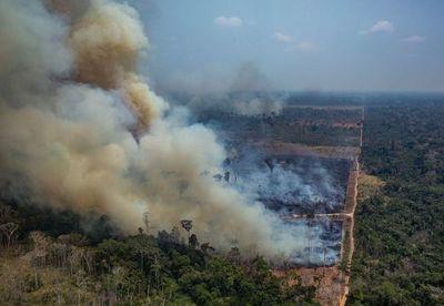 """Los """"fumadores pasivos"""" de la Amazonía"""